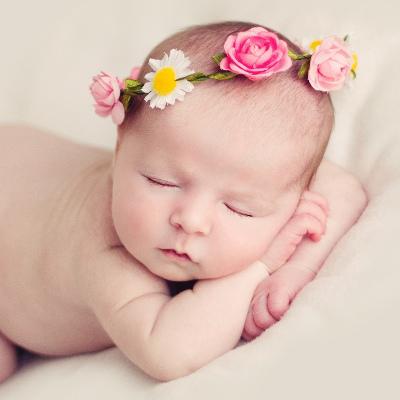 aliterme-lista-nascita-prodotti